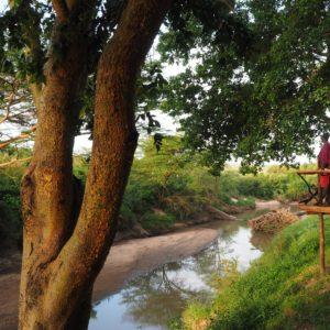 Woman standing on viewing deck overlooking the river at Basecamp Masai Mara safari camp in Kenya.
