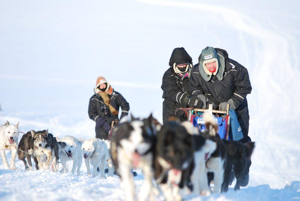 basecamp-spitsbergen-dogsledding-safari-20