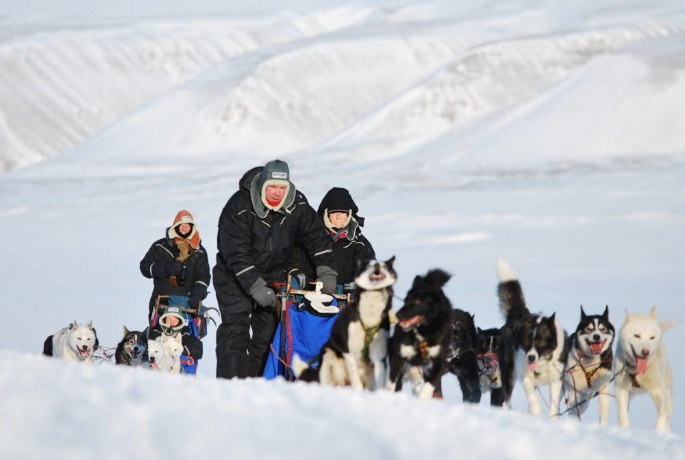 basecamp-spitsbergen-dogsledding-safari-23