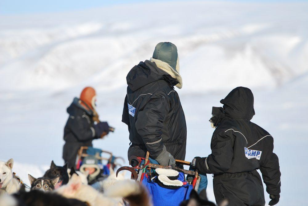 basecamp-spitsbergen-dogsledding-safari-24