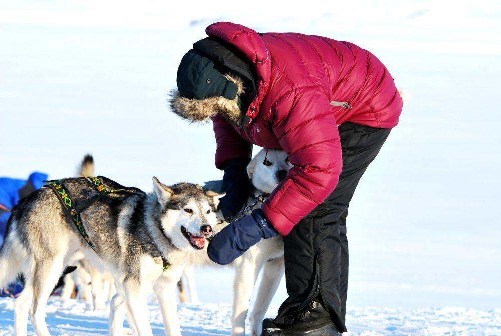 dogsledding_spitsbergen_8