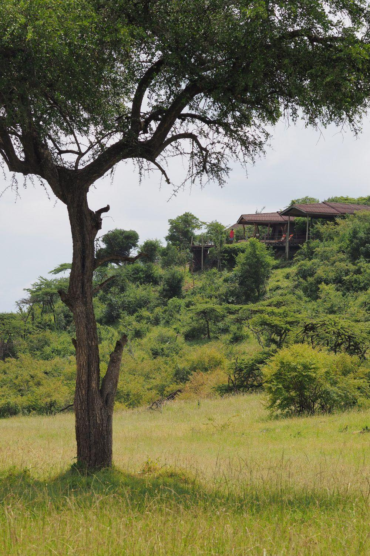 Eagle View Mara Naboisho Kenya