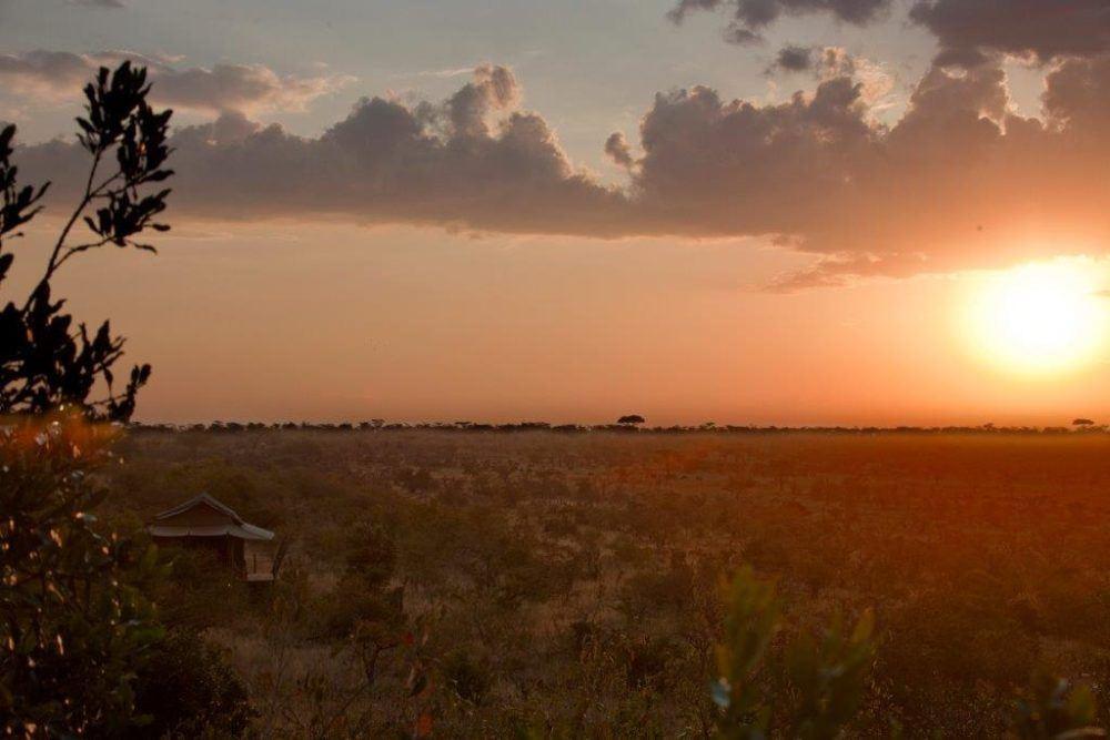 Eagle View Overnatting i Masai Mara Kenya