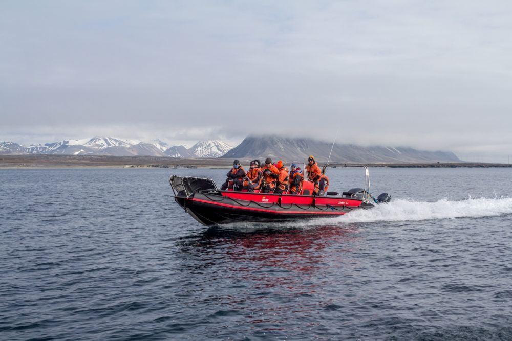 Isfjord Radio, boat safari
