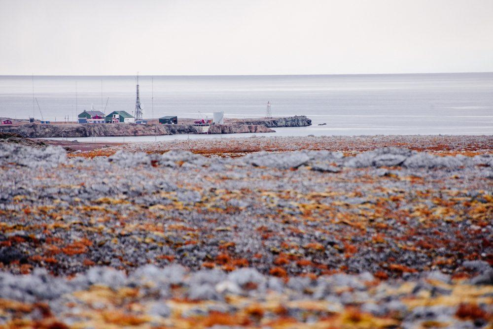 Isfjord Radio Autumn