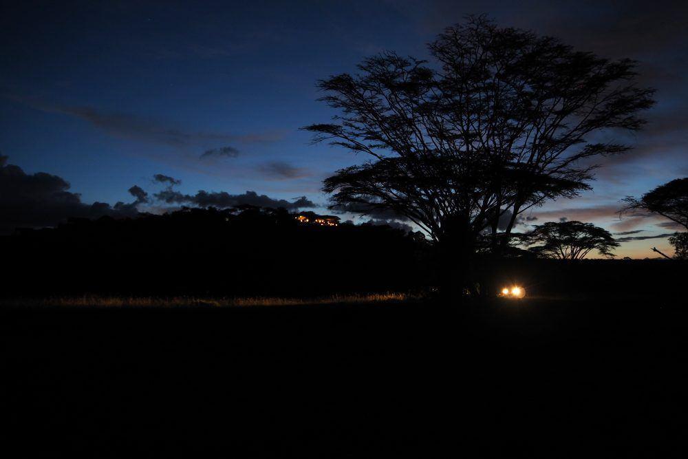 Nattsafari Naboisho Kenya