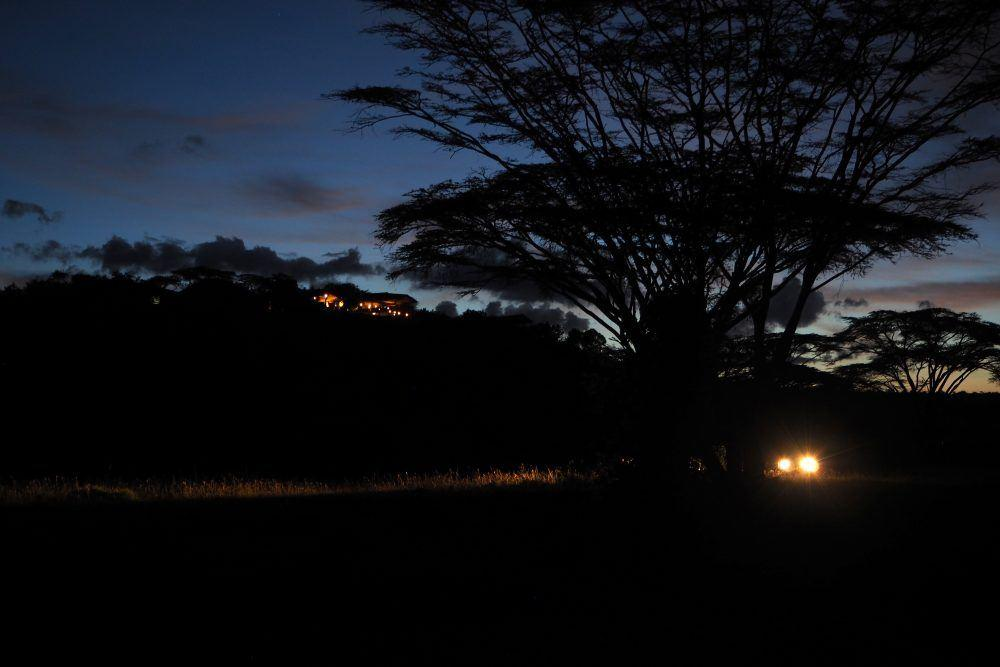Night Game Drive Mara Naboisho