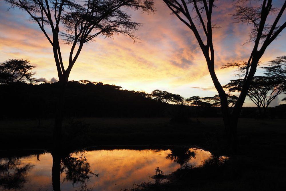 Scenery at Masai Mara Kenya