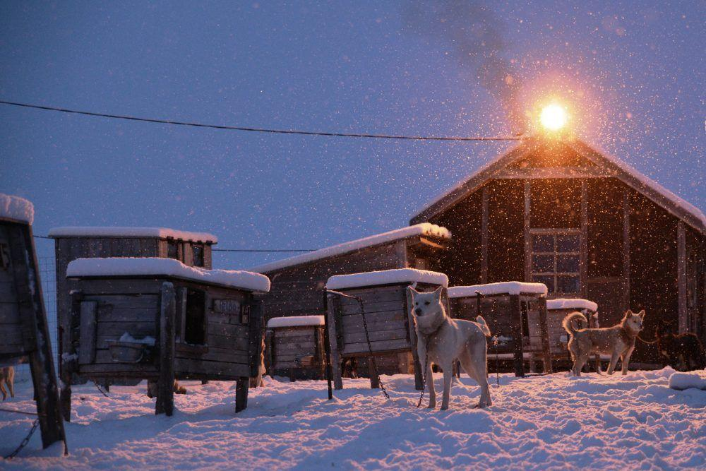 Trapper's Station Dark Season