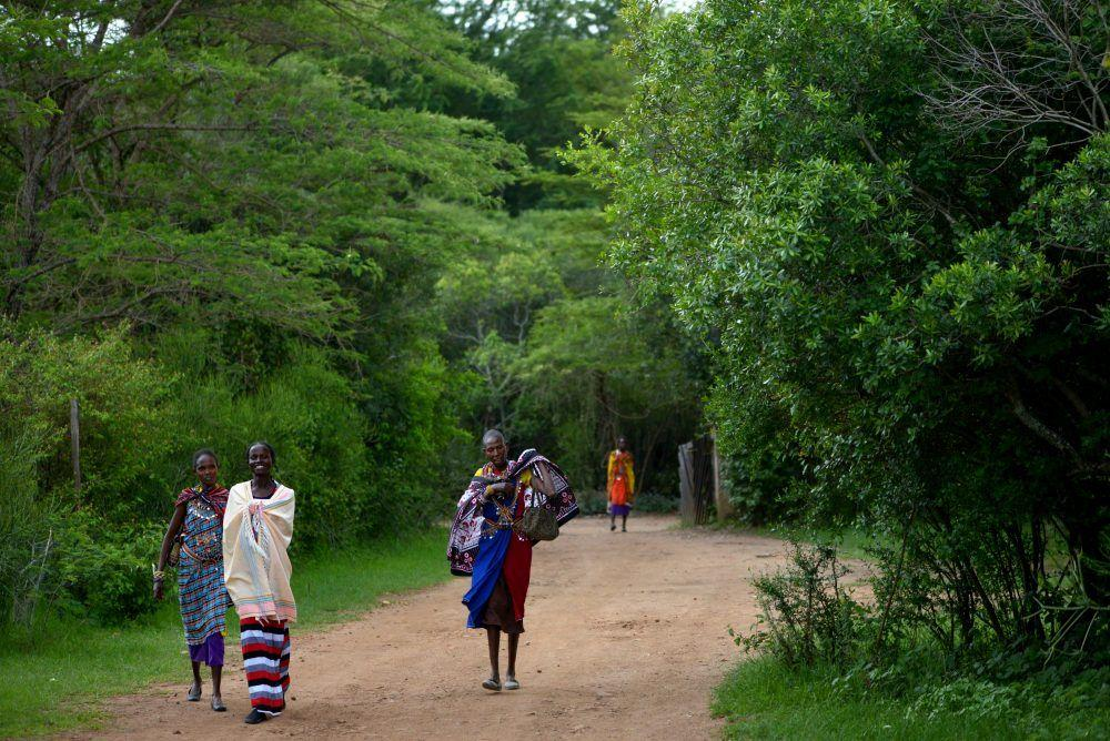 Maasai women in traditional dress walking on road in forest, Masai Mara Kenya.
