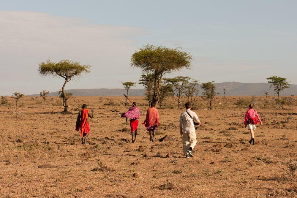 Vandre safari Mara Naboisho