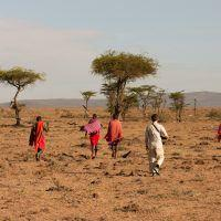 Maasai guides and tourist on the savannah on a Basecamp Explorer walking safari in Masai Mara.
