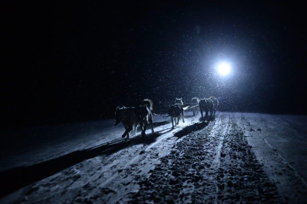 Dogsledding_Photo Morten Rostille_Basecamp Explorer5