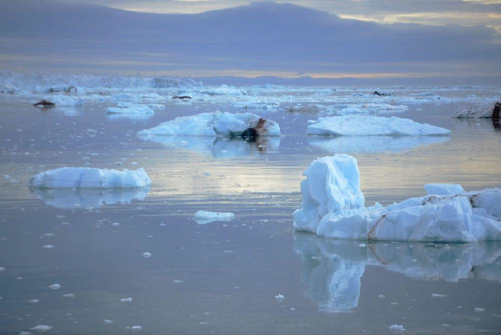 arctic_sailing_glaciers_jukkaikonen34