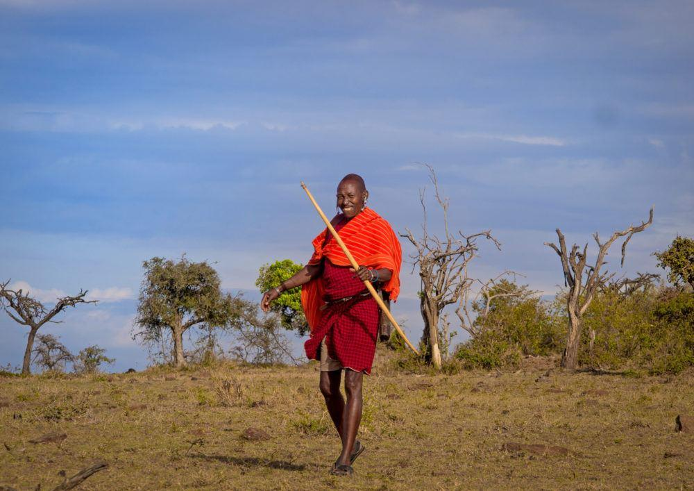 Maasai man walking on the savannah in Masai Mara, and smiling with a spear in hand.