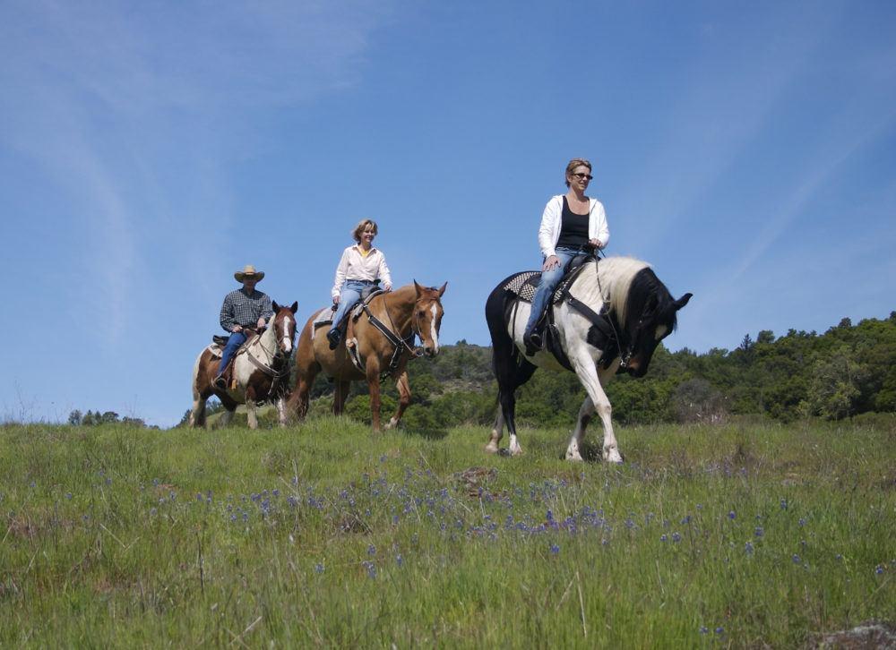horse-back-ride