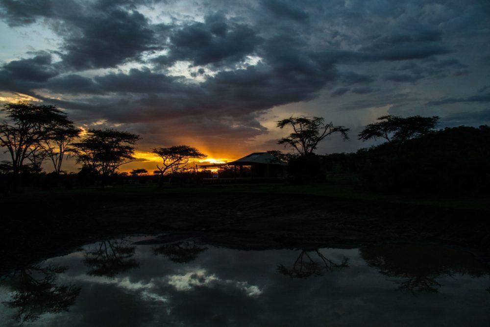 leopard-hill-at-sunrise-safaris-kenya-1