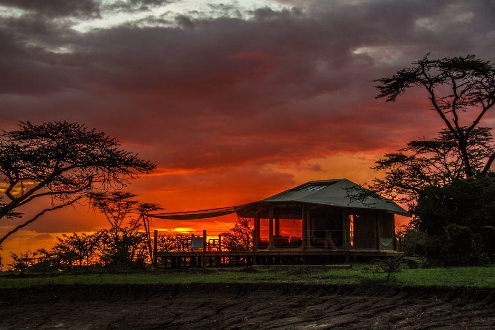 leopard-hill-at-sunrise-safaris-kenya-4