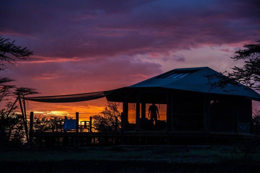 leopard-hill-at-sunrise-safaris-kenya-5