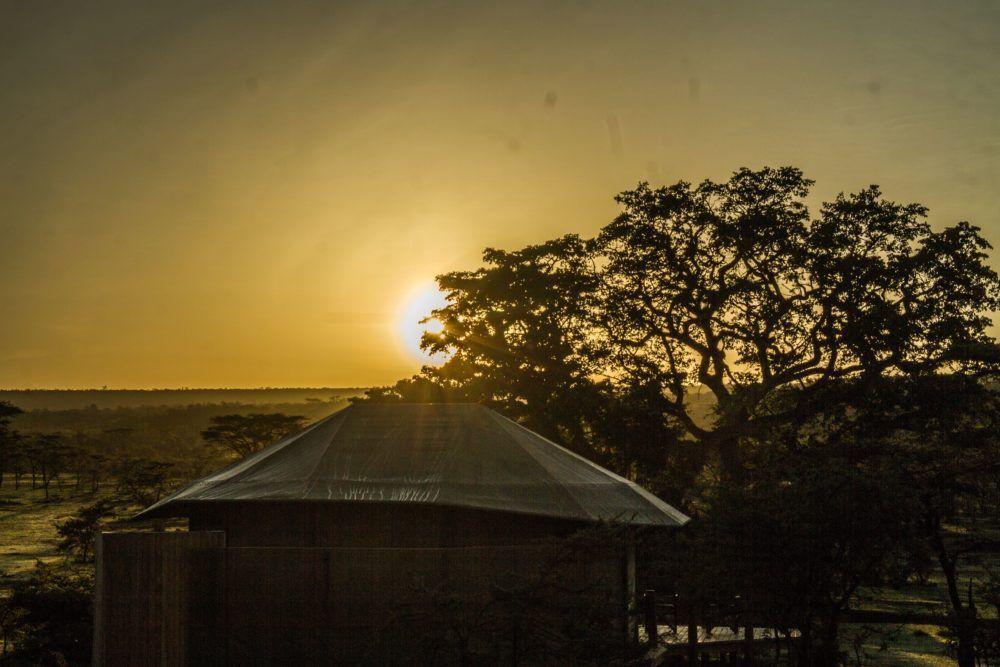 leopard-hill-at-sunrise-safaris-masai-mara-3