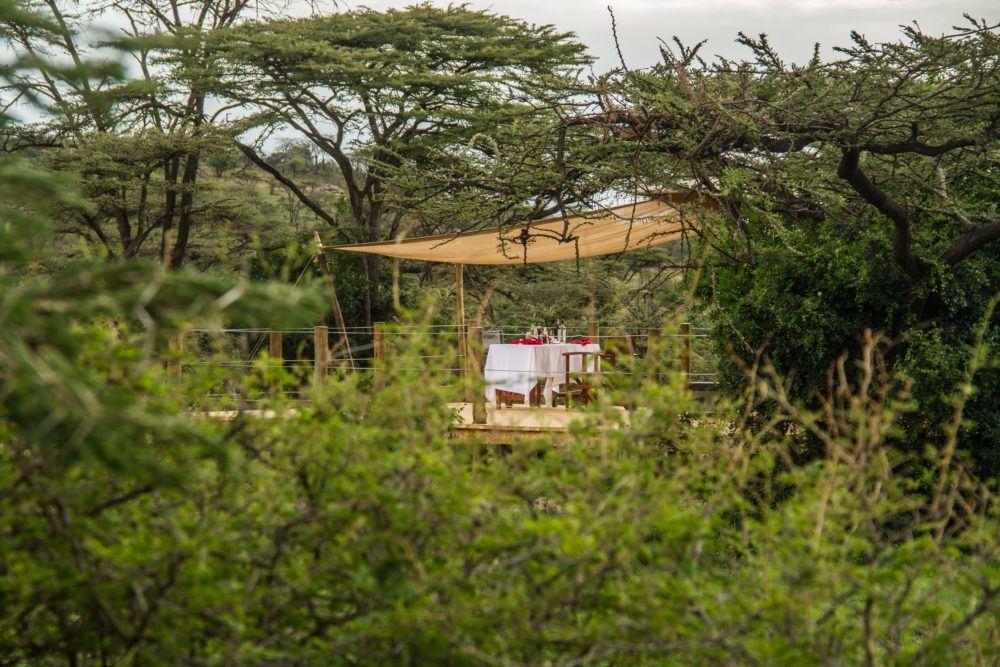 leopard-hill-camp-in-masai-mara-2
