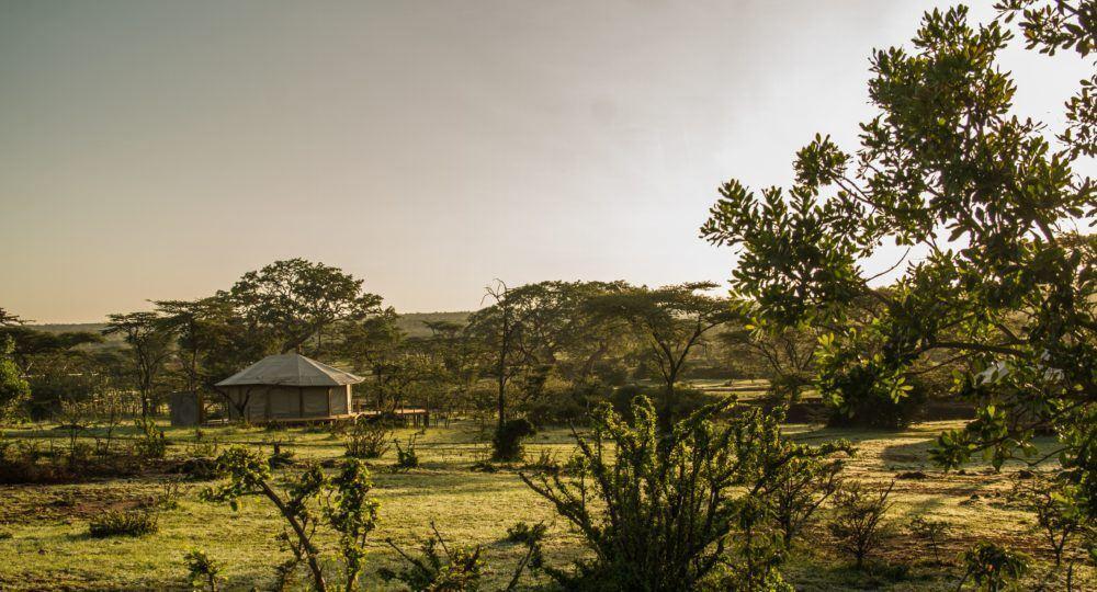 leopard-hill-camp-in-masai-mara-5