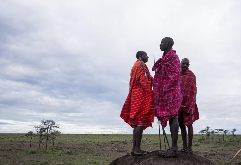 Three Masai men standing with spears looking into the distance on the African plains in Masai Mara.