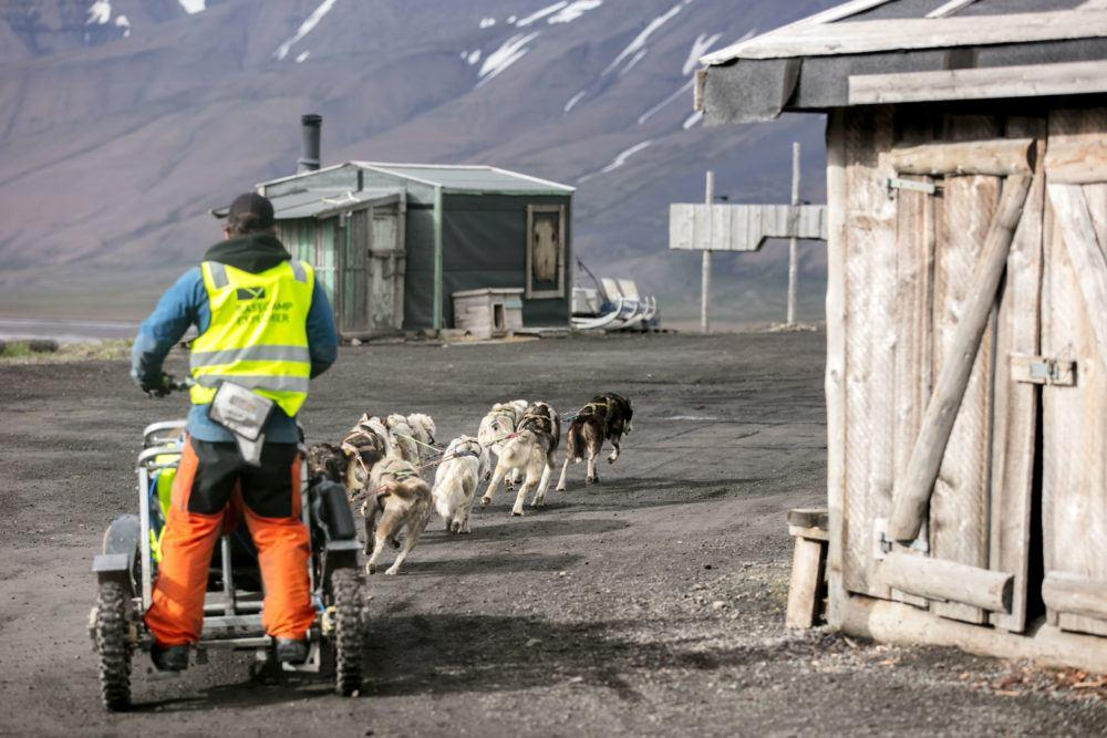 Summer dogsledding Bolterdalen_Photo by Silje Forbes_Basecamp Explorer
