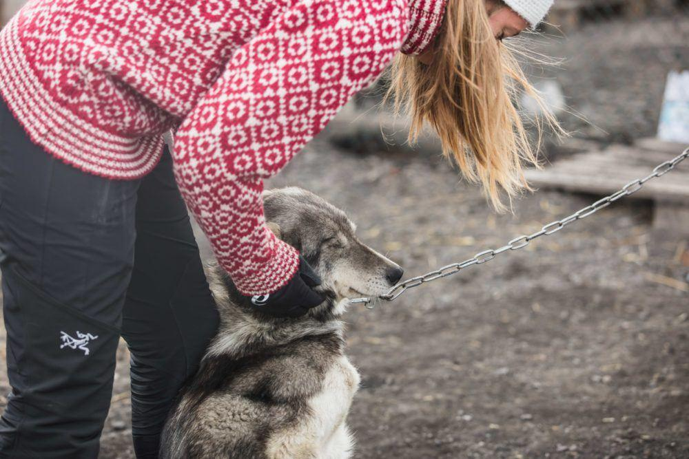 Summer dogsledding_Photo by Silje Forbes_Basecamp Explorer