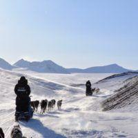 Two teams of sled dogs running through arctic valleys on a Basecamp Explorer dogsledding adventure on Svalbard.