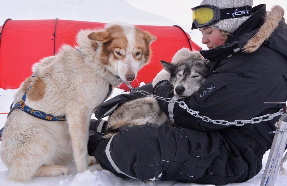 Dogsledding – Basecamp Explorer