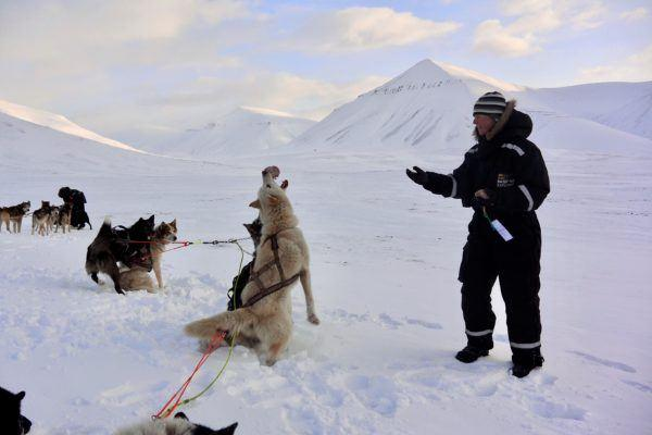 Person in snowsuit tossing food to husky sled dog on Basecamp Explorer dogsledding adventure on Svalbard.